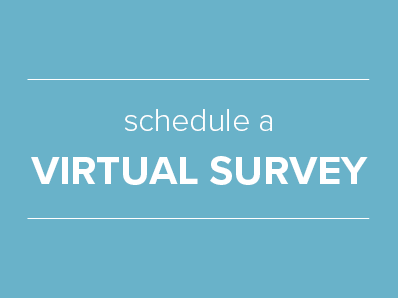 Virtual Survey